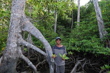 Salma Tatua (65 tahun), dari kelompok Maitefa, menunjukkan kawasan hutan manggorve di pulau Babo, Papua Barat, 2 April 2019. - JP/Jerry Adiguna